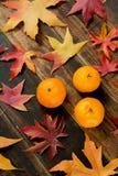 Season´s fruit Royalty Free Stock Images