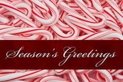 Season`s Greeting Message Royalty Free Stock Photography