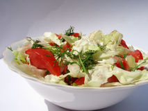 Season salad Royalty Free Stock Images