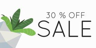 Season spring sale 30 off sign over plant. Sale 30 off sign over plant. Spring sale background banner Stock Image