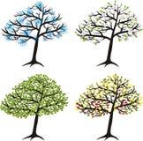 Season tree Stock Photography