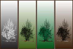 Season trees Stock Images