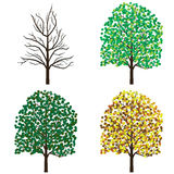 Season trees. Royalty Free Stock Photos