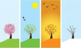 Season Trees Stock Photography
