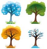 Season trees. Vector and cartoon illustration Stock Photos