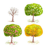 season trees. Set the  seasons trees. Deciduous blooming tree. Tree with yellow foliage. Tree with fruits. Cartoon style Royalty Free Stock Photos