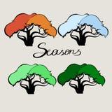 Season and the trees Stock Photos