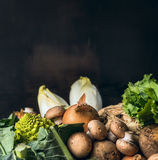 Season vegetables for cooking over dark background Stock Images