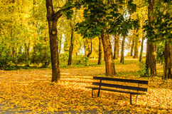 Season. Very beautiful autumn city park Stock Images