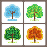 Season of year. One tree at different times of the year Stock Images