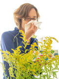 Seasonal Allergies. A woman sneezes as seasonal pollen triggers here plant allergy royalty free stock photos