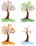 Seasonal apple trees Stock Photo