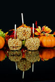 Seasonal Apples Stock Image