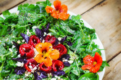 Seasonal arugula salad with goat cheese, roasted red peppers and edible nasturtium flowers Stock Photos