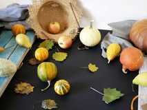 Seasonal autumn composition from a variety of pumpkins, pears, apples, yellow leaves and straw hat, preparation for a home holiday. Helloween, dark background royalty free stock photo