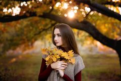 Seasonal autumn fashion portrait. Modern young woman wearing fashionable warm clothes posing in the autumn park holding. Yellow leaves royalty free stock photo