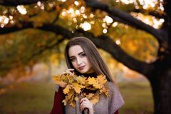 Seasonal autumn fashion portrait. Modern young woman wearing fashionable warm clothes posing in the autumn park holding. Yellow leaves stock images