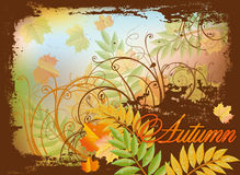 Seasonal autumn invitation card Royalty Free Stock Photo