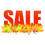 Seasonal autumn sale. Announcement of sale of the autumn on a background of yellow maple leaves.seasonal autumn sale Stock Photography