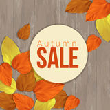 Seasonal autumn sale business background, vector. Colored yellow, orange, red autumn leaves on wooden surface Stock Image