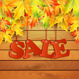 Seasonal autumn sale Stock Image