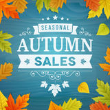 Seasonal autumn sales background Stock Photos