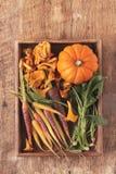 Seasonal autumnal vegetables Stock Image
