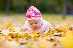 Seasonal baby girl Stock Photos