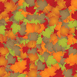 Seasonal background Royalty Free Stock Photography