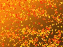 Seasonal background- falling leaves Royalty Free Stock Photos