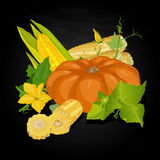 Seasonal background with pumpkins and corn Royalty Free Stock Photos