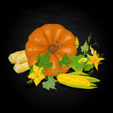 Seasonal background with pumpkins and corn Stock Images