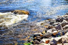 Seasonal background summer day on the stormy river stock images