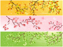 Seasonal backgrounds Royalty Free Stock Photo