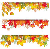 Seasonal banners of autumnal leaves. Set of Seasonal banners of autumnal leaves Stock Photos