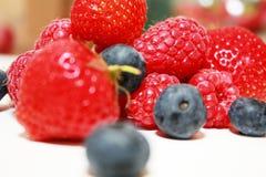 Seasonal berries Stock Image