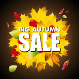 Seasonal big autumn sale business background with colored leafs in darkness Stock Photo