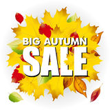 Seasonal big autumn sale business background with Royalty Free Stock Images
