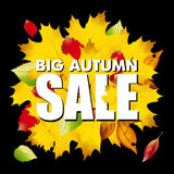 Seasonal big autumn sale business background with Stock Photos