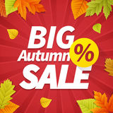 Seasonal big autumn sales business background Stock Photos