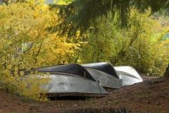 Seasonal Boats Resting in Autumn Trees royalty free stock photo
