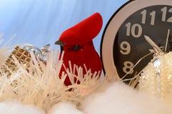 Seasonal Changes cardinal vermelho fotografia de stock
