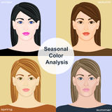 Seasonal color analysis. Set of vector girls with different types of female appearance Royalty Free Stock Image