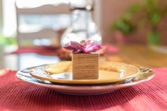 Autumn place setting with succulent royalty free stock photos