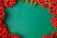 Seasonal fall concept, berries in frame on wooden table royalty free stock photo
