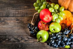 Seasonal fall fruits and pumpkin. Autumn and thanksgiving harvest concept. Seasonal fall fruits and pumpkin on wooden table, copy space top view royalty free stock image