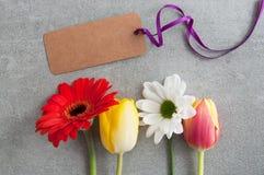 Seasonal flower greeting stock photo