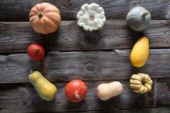 Seasonal frame of pumpkins, squashes and gourds for vegetarian menu Stock Photo