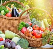 Seasonal fresh organic vegetables Royalty Free Stock Images