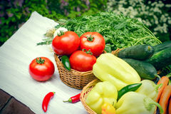 Seasonal fresh vegetable - eating healthy food Royalty Free Stock Photos